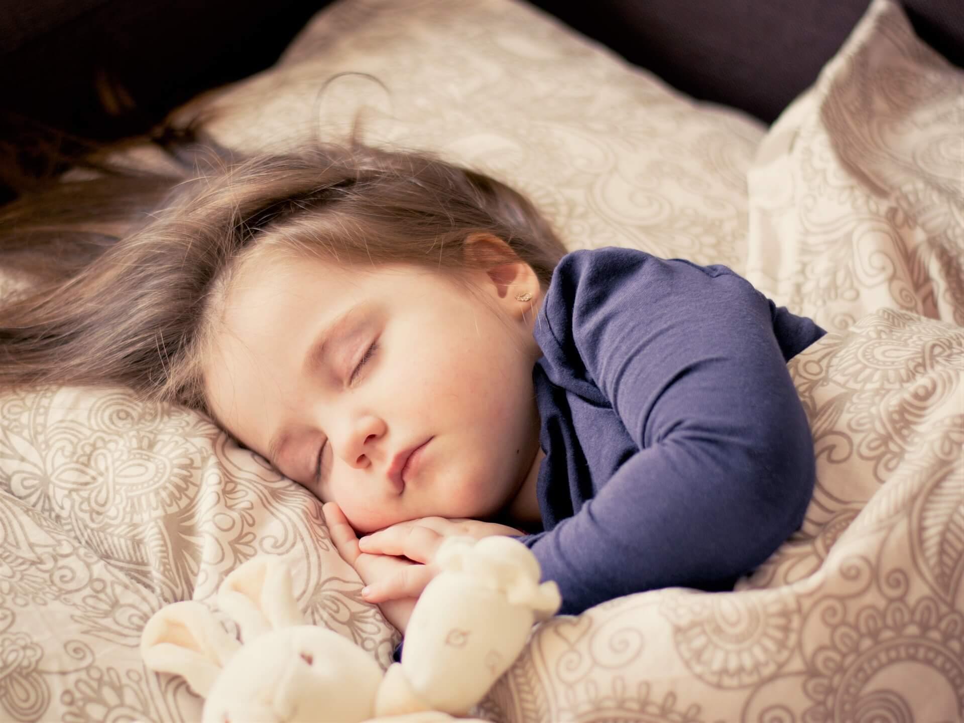 ハクビシン被害を解決して安心して眠る子ども